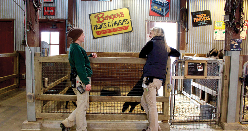 Keeper Meghan McNamara and Dr. Barbarits talk about the animals in the Zoo's contact barn.